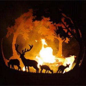 woodland-countryside-fireball-1