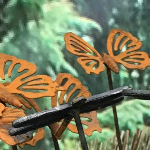 med butterfly
